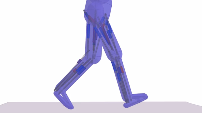 Animating Human Lower Limbs Using Contact-Invariant Optimization
